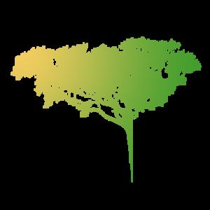 solutions_tree_services_removal_faviconlogo